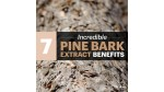 7 Pine Bark Extract Benefits, Including for Skin, Hearing & Diabetes